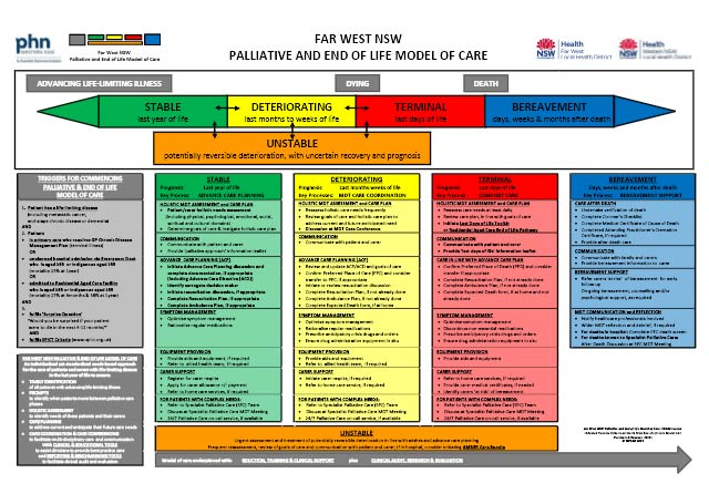 electronic Palliative Approach Framework